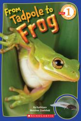 Scholastic Books From Tadpole to Frog
