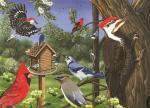 Outset Media Games Around the Birdfeeder Tray Puzzle, 35 pcs