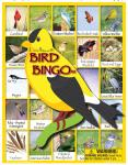 Lucy Hammett Bird Bingo